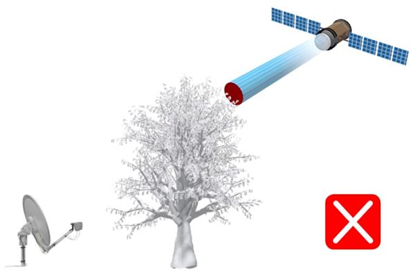 спутниковый интернет в лес